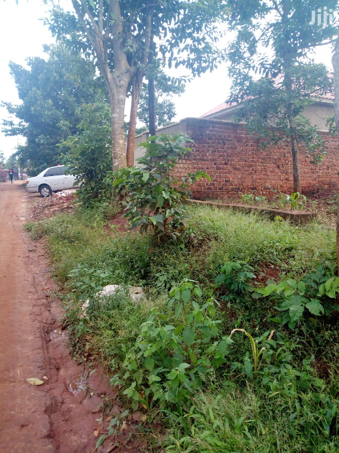 Archive: 15 Decimals In Kira Land For Sale