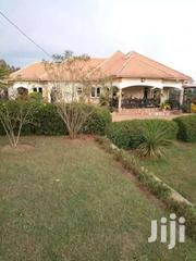 Create The Ideal Place 4bedroom 3baths On 50decs In Matugga | Houses & Apartments For Sale for sale in Central Region, Kampala