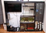 We Build Home,Hotel,Schools Aquariums In All Sizes At Affordable Price | Fish for sale in Eastern Region, Mbale