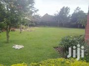 Five Bedroom House In Munyonyo For Rent | Houses & Apartments For Rent for sale in Central Region, Kampala