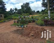 Half Acre on Sale Located in Mukono Town Just Opposite Jobia Hotel | Land & Plots For Sale for sale in Central Region, Mukono