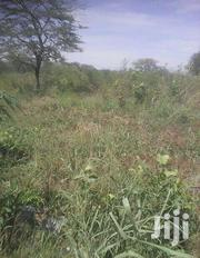 6 Acres Of Land In Hoima Municipality For Sale | Land & Plots For Sale for sale in Western Region, Hoima