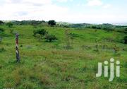 450 Acres Land In Kamwenge District For Sale | Land & Plots For Sale for sale in Western Region, Kamwenge