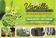 Vanilla Both Beens And Dry | Feeds, Supplements & Seeds for sale in Central Region, Kampala