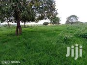 450 Acres Land For Sale | Land & Plots For Sale for sale in Western Region, Kamwenge