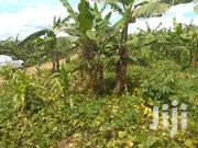 Cheap Plots In Katete For Sale | Land & Plots For Sale for sale in Western Region, Mbarara