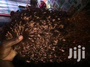 Brown Curly Wig   Hair Beauty for sale in Central Region, Kampala