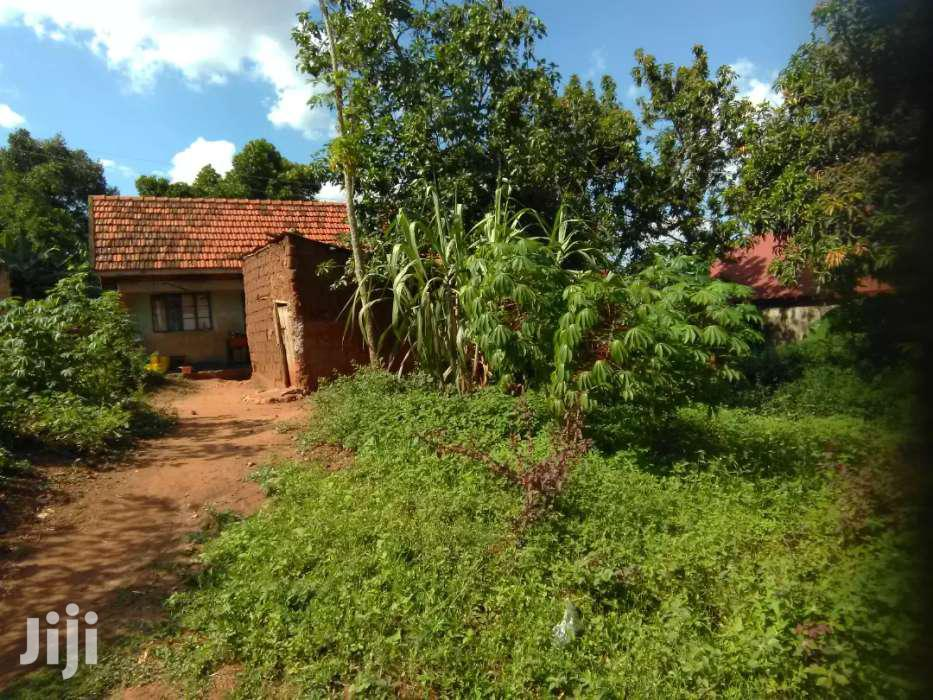 Plot On Quick Sale In Heart Of Buziga In Rich Neighbos Give Away Price | Land & Plots For Sale for sale in Kampala, Central Region, Uganda