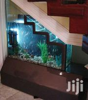 Table Aquariums | Fish for sale in Central Region, Kampala